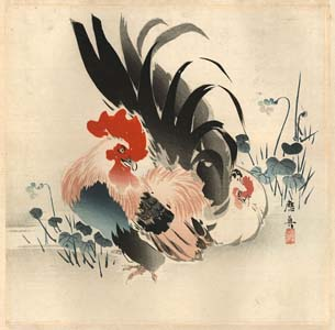Ôshin: Colourful rooster
