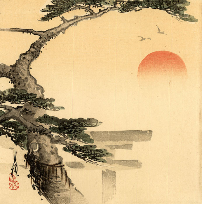 Gekkô: Pine tree with sunrise