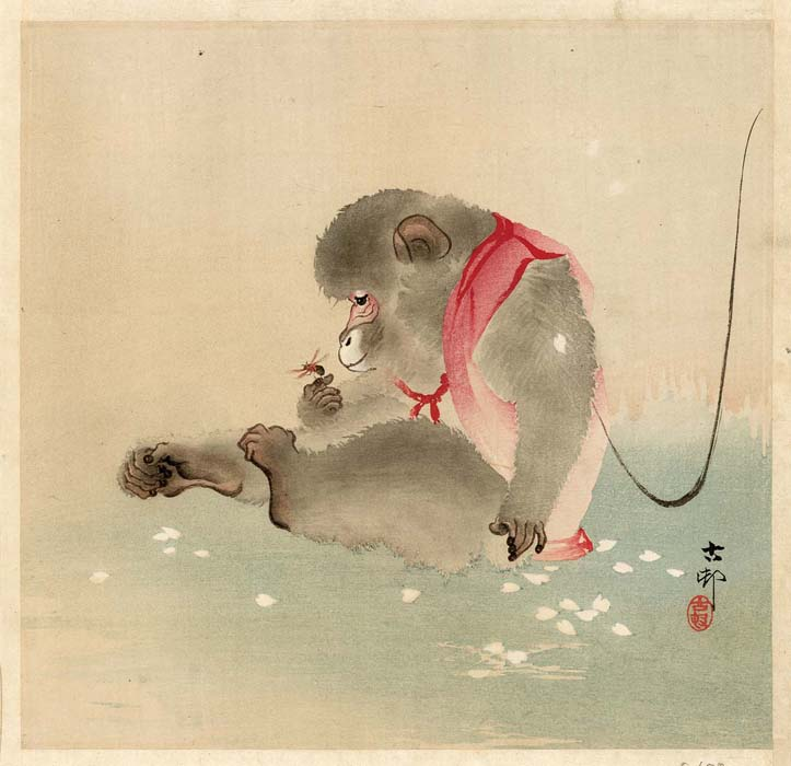 Koson: Monkey and bee