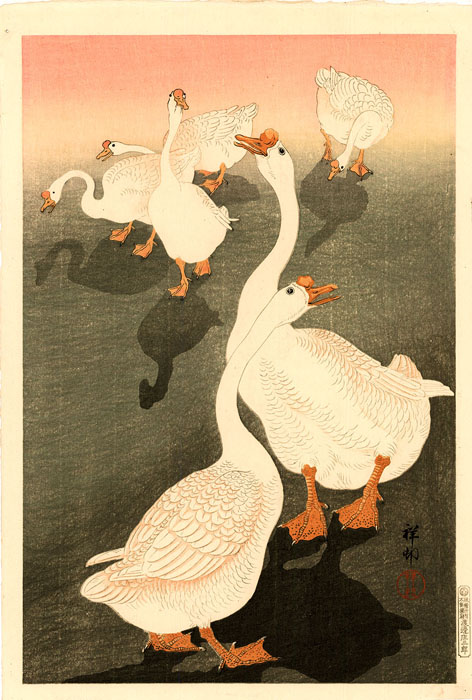 Koson: Chattering geese