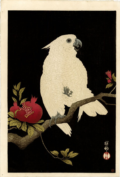 Koson: Cockatoo