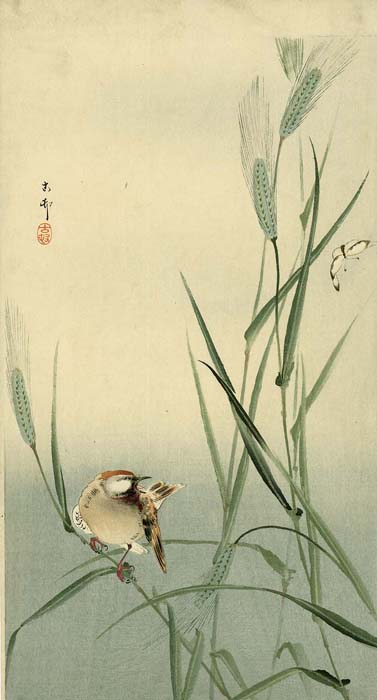 Koson: Songbird and butterfly