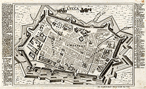 Lucca - Stridbeck